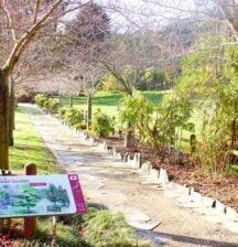 Buggy-friendly walks in Christchurch