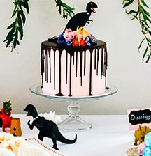 Dinos, donuts, & daisies, oh my!