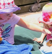 A Wellington Mum's Guide To School Holiday Fun
