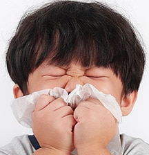 How to beat hay fever