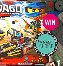 PARENTS' CHOICE!  Vote for your favourite playground and cafe combo (and win Lego!)