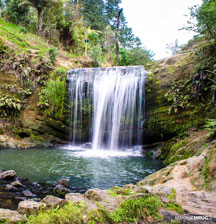 Family waterfalls in Auckland