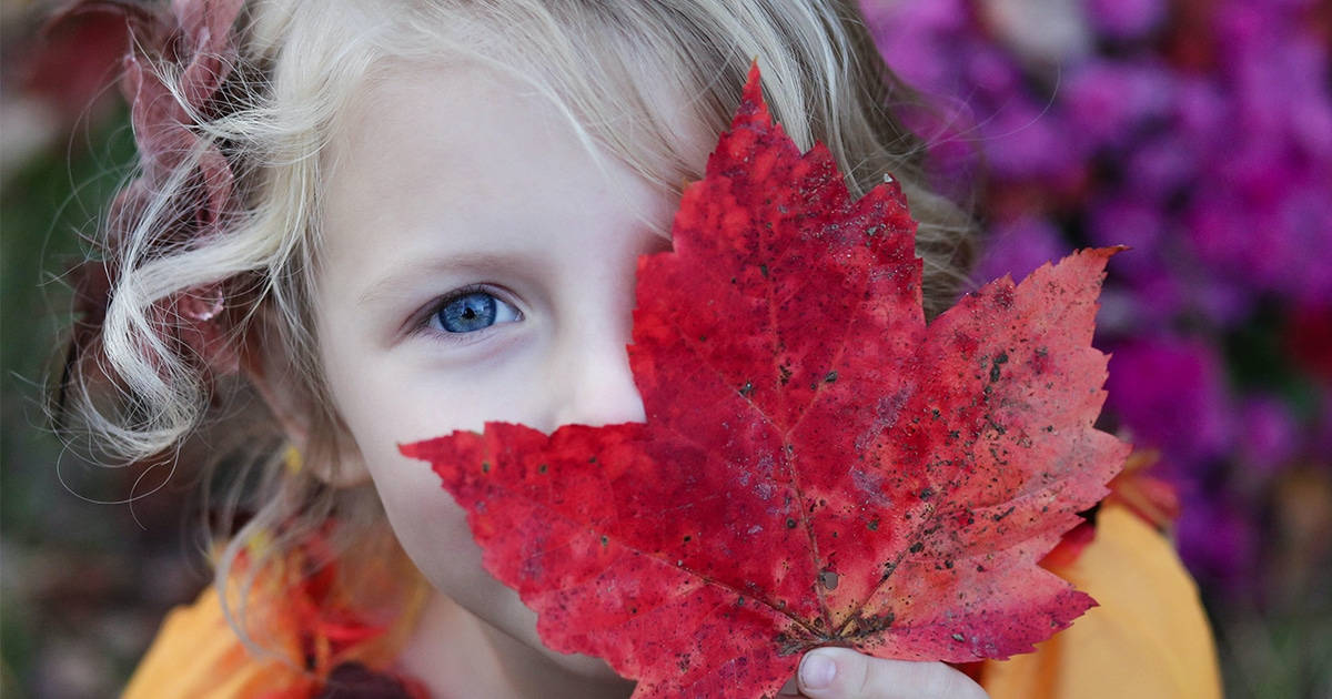 child with strong social and emotional skills holding an autumn leaf  - tots to teens